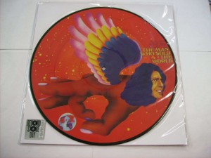 The man who sold the world (LP PDK)