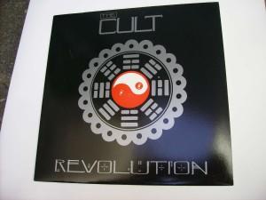 Revolution (remix) / All soul's avenue