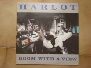 Room with a view (w/innersleeve)